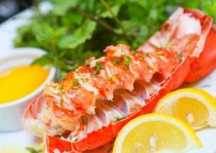 Mengapa Harga Lobster Itu Mahal ?